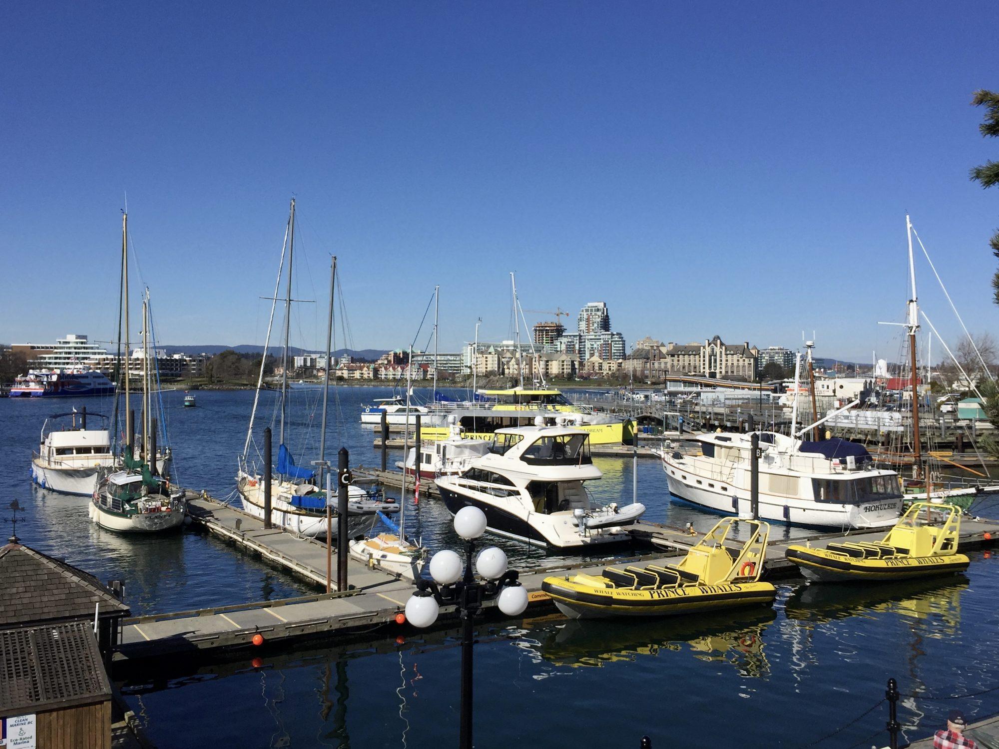 Hafen von Victoria mit Zodiacs