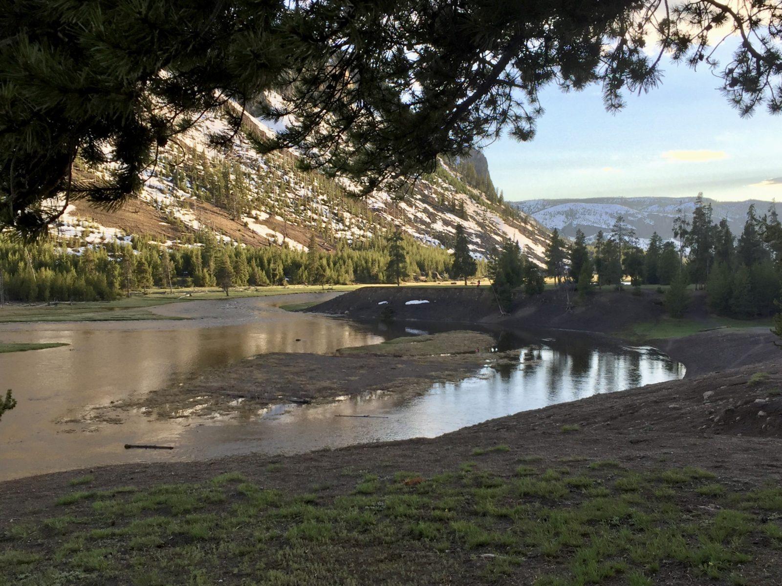Enges Bergtal mit mäanderndem Fluss, grünen Wiesen und Nadelwild am Randes des Madison Campgrounds im Yellowstone National Park