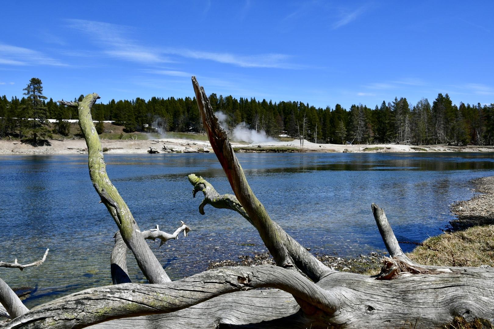 liegendes Baumgerippe vor seichtem glasklarem Fluss, am anderen Ufer qualmt es an mehreren Stellen aus Felsspalten heraus